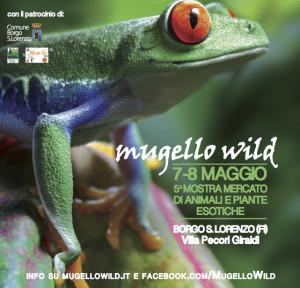 mugello wild 2016